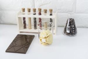 Linden_Chocolate_Lab_Concept2